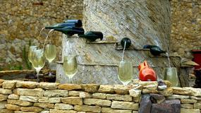 Jesień w Mołdawii - festiwal wina i lokalne przysmaki w Kiszyniowie