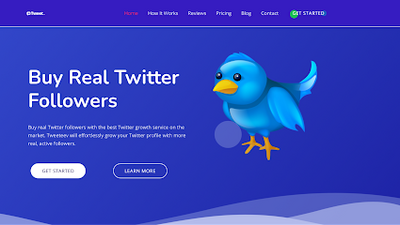 30 best sites to buy Twitter followers that are real & active