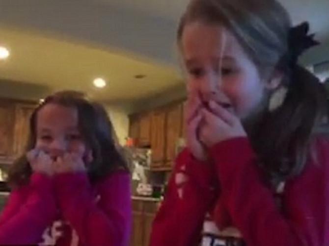 Ovaj neodoljiv snimak nateraće vam suze na oči: Ispod jelke su našle najlepši mogući poklon!
