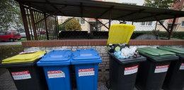 Wreszcie wywiozą śmieci?