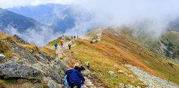 Nie zostawiaj śmieci w Tatrach!