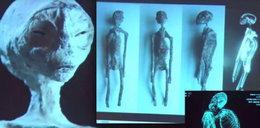 Zbadali mumie kosmitów. Czy są prawdziwe?