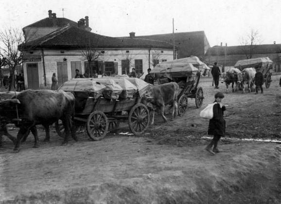 Prevoz umrlih od pegavog tifusa, Niš, mart 1915.