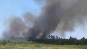Seria pożarów w polskich lasach. Wyznaczono nagrodę za pomoc w złapaniu podpalaczy