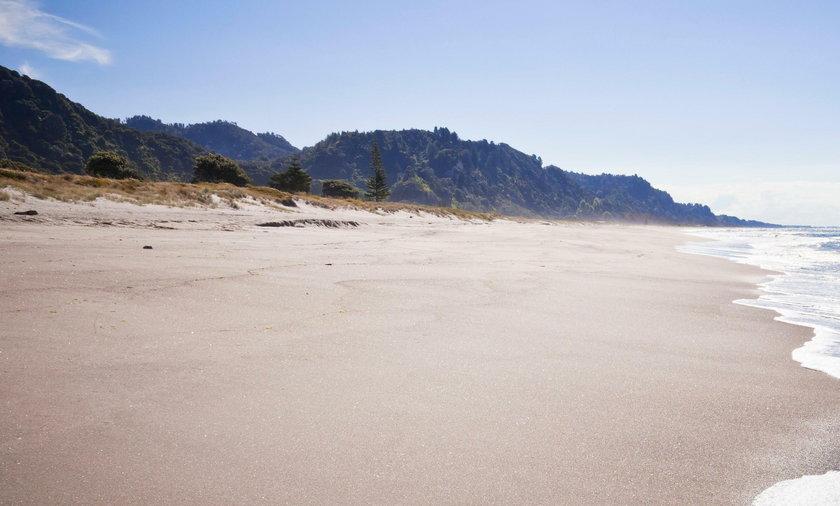 Bezbronny pies błąkał się po pustej plaży