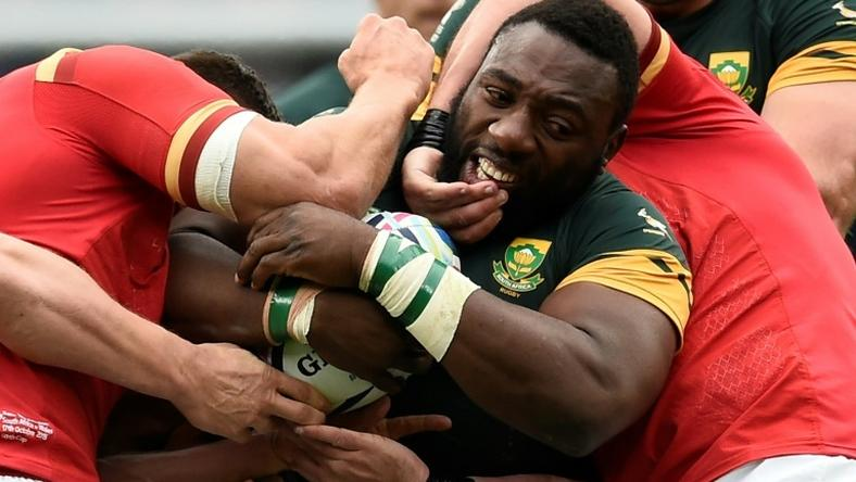 South Africa and Wales played each other at the World Cup four years ago, with the Boks edging the Welsh 23-19 in the quarter-finals at Twickenham