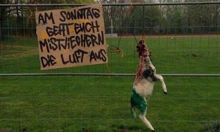 Bestialski wybryk niemieckich kibiców