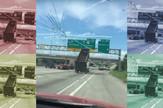 AP_kamion_rusi_znak_autoput_vesti_blic_safe