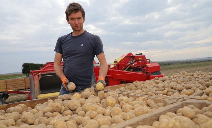Do czego to doszło! Polski ziemniak ma mieć paszport
