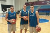 Nemanja Jaramaz, Petar Aranitović, Jovan Novak