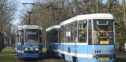 Powalone przez wiatr drzewo zatrzymało tramwaje