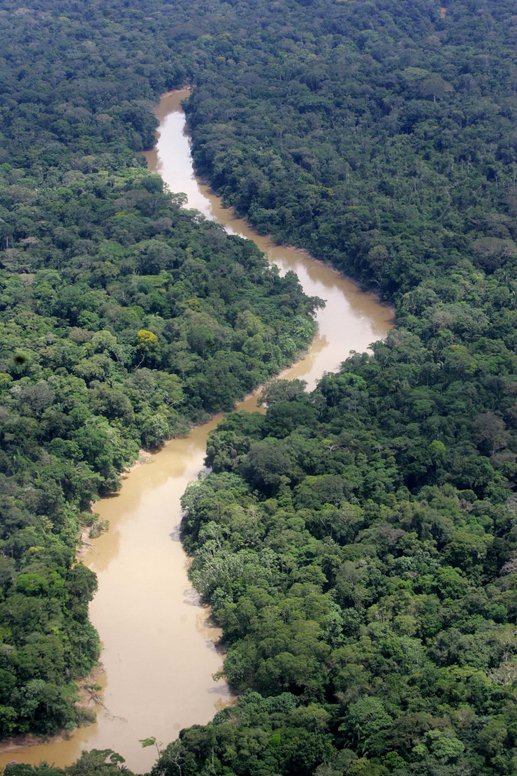 383951_aerial-view-of-the-yasuni-national-park-in-ecuadors-amazonian-region-ap