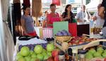 Šesti festival šljive u Ugljeviku: Majevčani brendiraju svoju rakiju