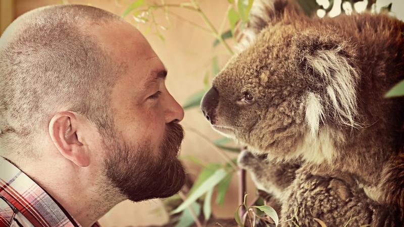 Selfie z koalą
