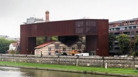 Dzień Otwartych Drzwi Muzeów Krakowskich: darmowe zwiedzanie i specjalne atrakcje