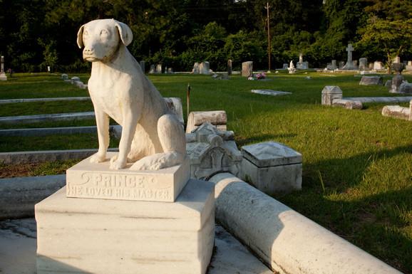 U inostranstvu postoje groblja za kućne ljubimce
