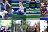 Zemunci za stepenice