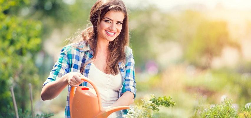 Siedem najlepszych narzędzi ogrodowych, które ułatwią ci pracę!
