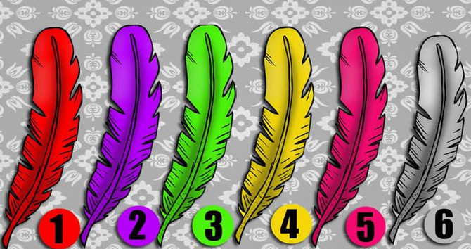 Šest pera je na slici, a koje se vama najviše dopada?