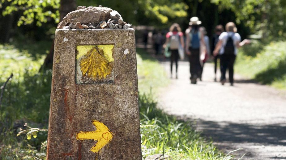 Muszla wyznaczająca szlak Camino