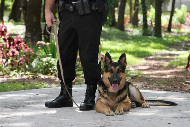 Policjant z psem tropiącym
