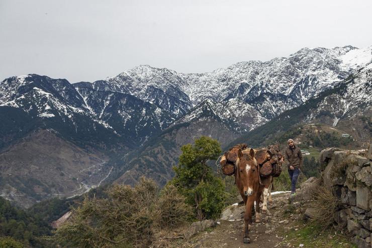 Indija planina  Himalaji
