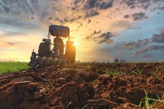 Wzrosty cen nawozów szokują rolników. Za żywność zapłacimy jeszcze więcej?