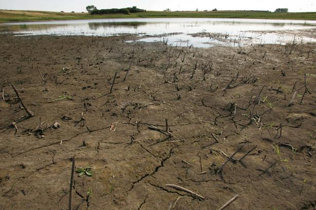 Zmniejszenie globalnych zbiorów wiąże się z suszą w USA oraz w Rosji, dla której przewiduje się plony niższe niż w bardzo złym 2010 r.