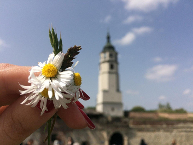 Uz malo volje i rada i Beograd bi mogao postati pametni grad