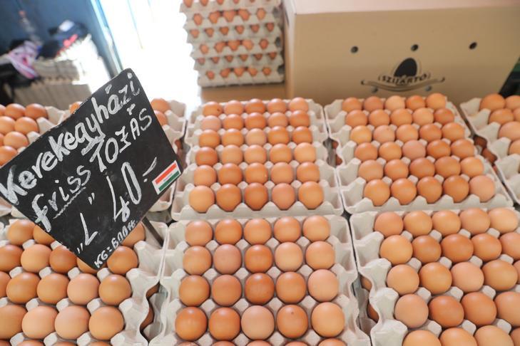 Se espera que la carne sea más cara, Rebanada de huevo barata 45 HUF / Foto: Péter Zsolnai