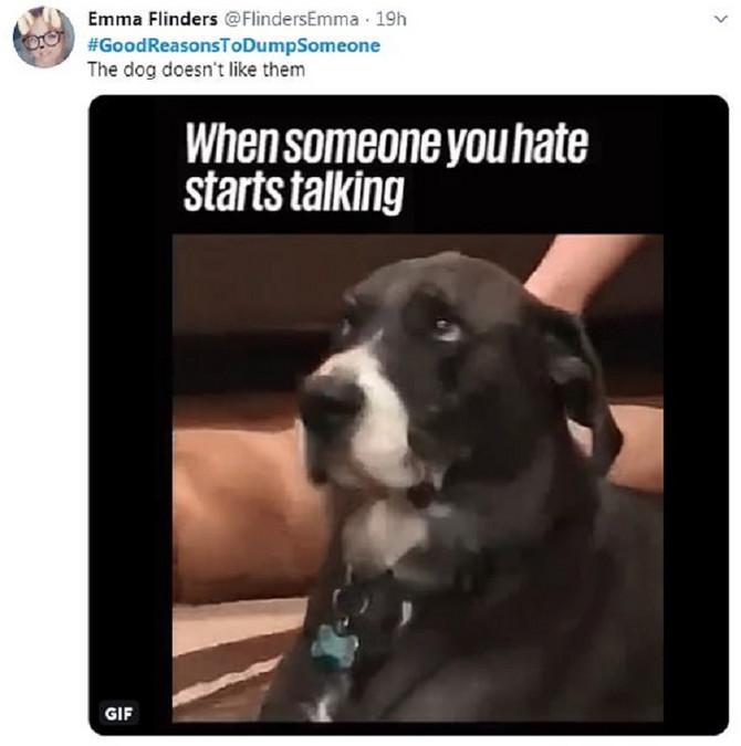Kad pas kaže da neko ne valja, to je onda to, misle neki