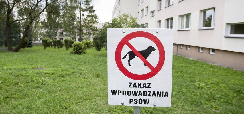 Czy zakaz wyprowadzania psów na trawnik jest legalny?