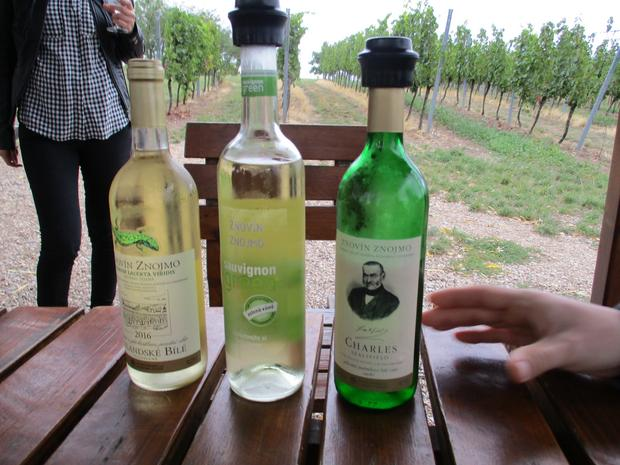 Morawskie wina cieszą się uznaniem coraz większej liczby koneserów