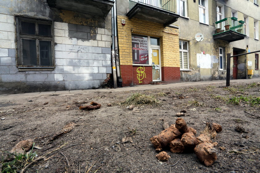 brud na ulicy w Łodzi