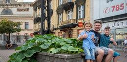 Chcemy zazielenić całą Łódź!