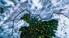 Najlepsze zdjęcia International Drone Photography Contest 2016