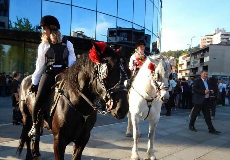 matura Tuzla konji 3
