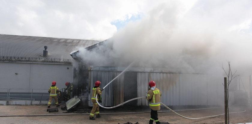 Pożar Biedronki koło Słupska! Dach marketu w ogniu