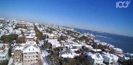 Rekordowo mroźna zima w USA. Cierpią nie tylko ludzie ale i zwierzęta