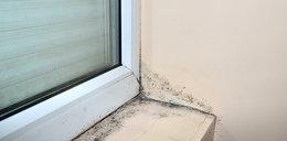 Śmiertelne niebezpieczeństwo może czyhać na ciebie w domu! Jak się przed nim ustrzec?