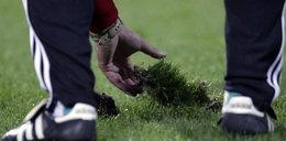Piłkarze Lechii skarżą się na stan boiska na PGE Arenie