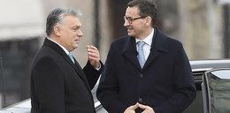 Polska i Węgry liderami w europejskim rankingu. Ale to nie jest powód do dumy