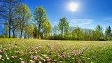 Prognoza pogody na weekend. Wiosna przyjdzie, ale nie wszędzie