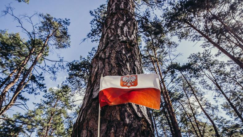 Polski Cmentarz Wojenny w Kijowie-Bykowni