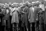 holokaust02 foto Wikipedia Arnold E. Samuelson
