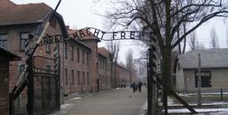 Wystawa o obozowym ruchu oporu powstanie w Muzeum Auschwitz