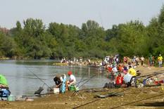 Loznica01 dani drine na branjevu takmicenje ribolovaca i kulinara foto s.pajic