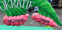 Kaczyński jako gąsienica obgryzająca liść demokracji