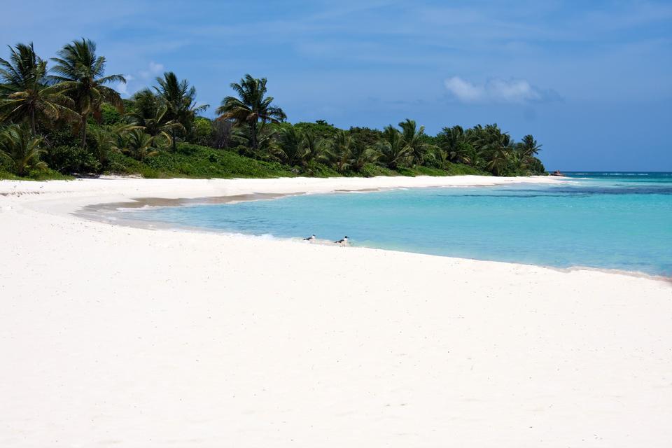 Miłośników pięknej i dzikiej przyrody zachwyci również plaża Playa Flamenco w portorykańskiej Culubrze. Wyspa ma zaledwie 30 km2, ale jest popularnym turystycznym kierunkiem.