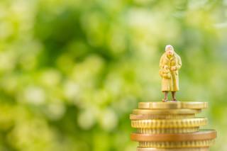 Fogiel: Trzynaste emerytury będą wypłacone zgodnie z planem. Odrzuciliśmy blokadę senacką